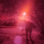Infrared photograph of Jody in a scary stance