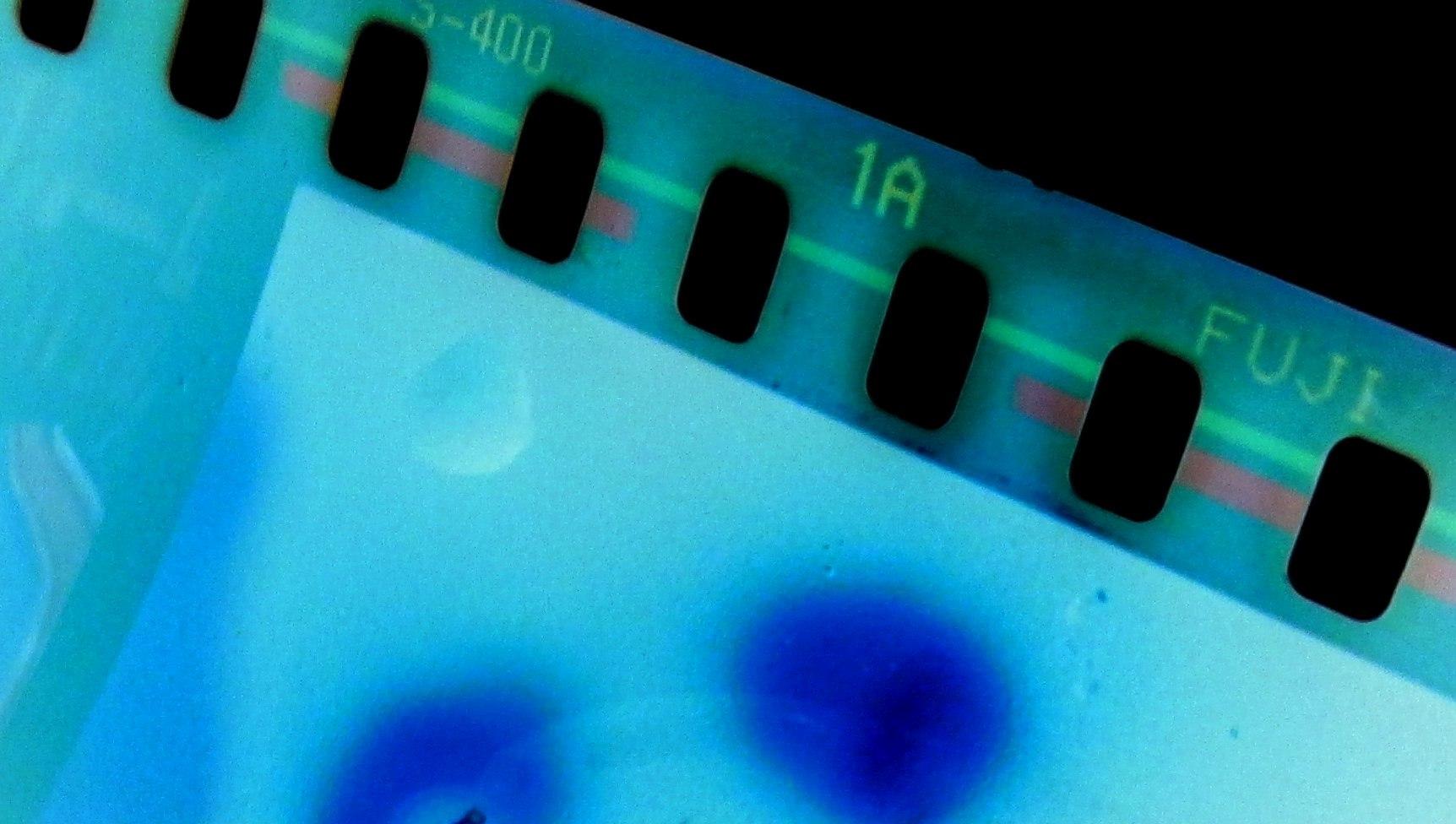 Inverted image of color film negative